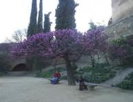 imagen Jardines del Mundo: La Alhambra