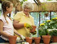 imagen Tres abonos naturales para tus plantas sin gastar un centavo
