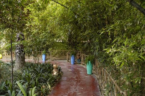 jardin-majorelle-12
