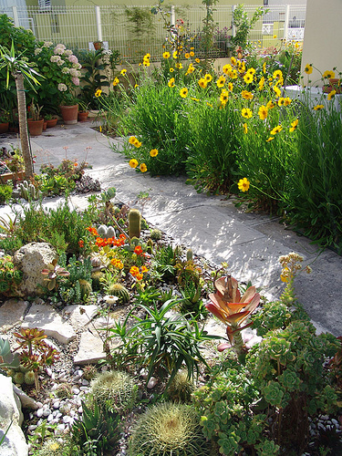 mantenimiento-del-jardin-antes-de-que-llegue-la-primavera