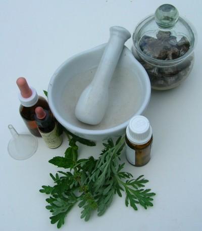 homeopatia-medicina-en-comunion-con-la-naturaleza-p1