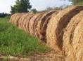 imagen Nutrición orgánica de los suelos – Parte III
