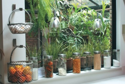 Linda ventana de cocina new home pinterest - Plantas d interior ...