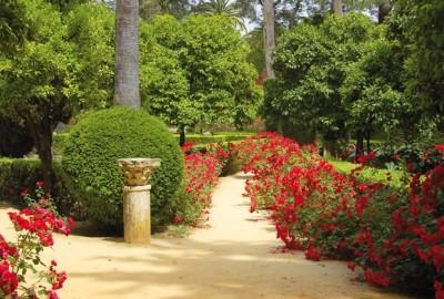 El jard n de ensue o en casa consejos - Como tener un jardin en casa ...