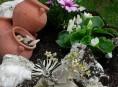 imagen Como tener un Jardín de Rocalla – Parte III
