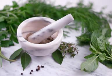 la-homeopatia-medicina-en-comunion-con-naturaleza-p2