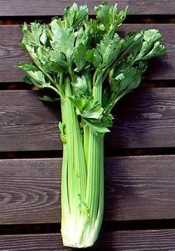 plantas-afrodisiacas-p2-01