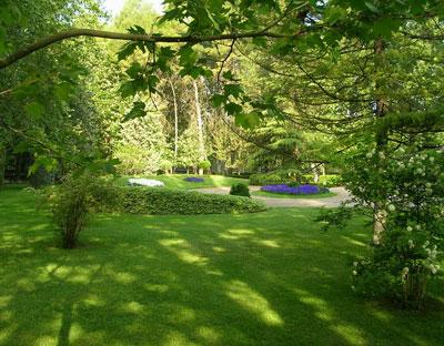 Trucos para cuidar el jard n del sol consejos pr cticos - El jardin del sol ...