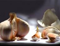 imagen Guía de cultivo: Ajos