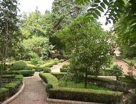 imagen Diseñar un jardín mediterráneo – Parte I