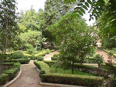 Dise ar un jard n mediterr neo parte i Plantas jardin mediterraneo