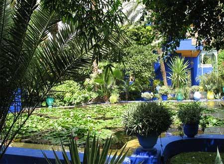 Dise ar un jard n mediterr neo parte iii - El jardin mediterraneo ...