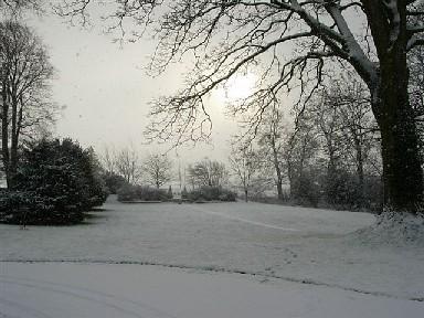 trabajos-de-invierno-en-el-jardin-p2-01
