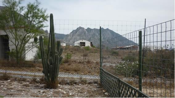 Las fotos de mi desierto casi al natural 1