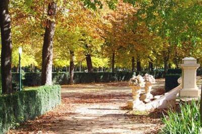 Consejos para el otoño