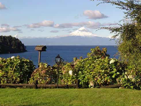 volcan y arbustos_JPG