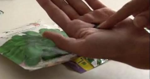Aprende a plantar semillas - Semillas de hortensias ...