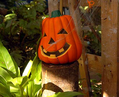 Decora tu jardín para Halloween-07