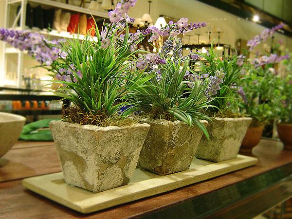 Trucos para cuidar tus plantas artificiales