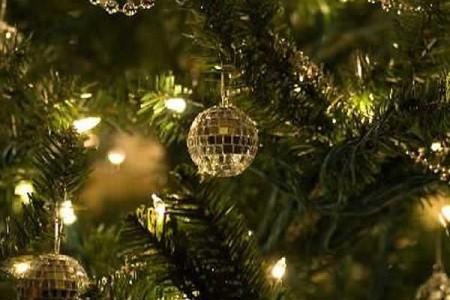 Consejos para comprar un arbol de Navidad natural