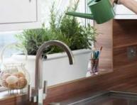 imagen Riego y humedad necesaria para las plantas de interior