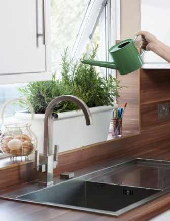 Riego y humedad necesaria para las plantas de interior1