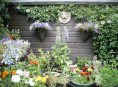 imagen Algunas ideas para jardines pequeños