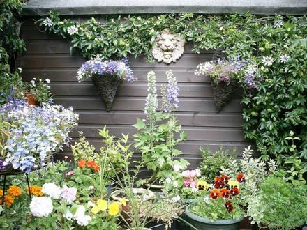 Algunas ideas para jardines peque os for Ideas para arreglar un jardin pequeno