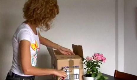 Aprende a transportar tus plantas en las mudanzas