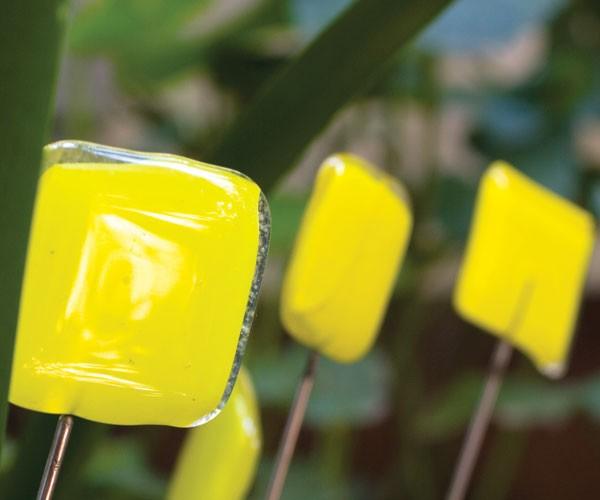 Divertidos objetos para decorar tu jardín-08
