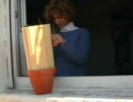 imagen Protege del viento a las plantas