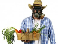 imagen Tips para usar pesticidas
