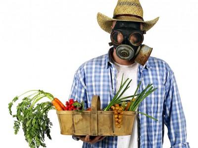 Tips para Usar Pesticidas