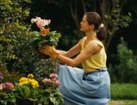 imagen Consejos para los jardineros