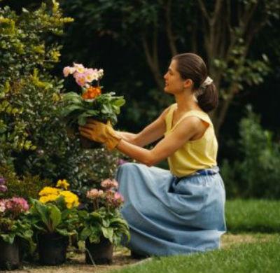 Debate consejos p gina 4 - Consejos de jardineria ...