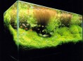 imagen Cuidado de plantas acuáticas
