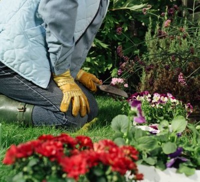 Herramientas de jard n que debes tener primera parte for Herramientas para el jardin