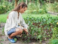 imagen Labores básicas de la jardinería (II)