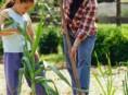 imagen Labores básicas de la jardinería