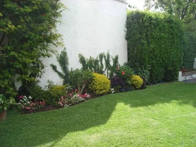 Cuidados b sicos para un bello jard n - Fotos de jardines decorados ...