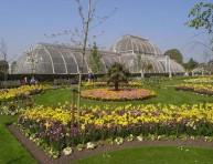imagen Real Jardín Botánico de Kew