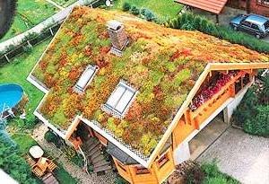 Cubiertas vegetales - Cubiertas vegetales para tejados ...