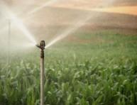 imagen Controla la calidad del agua