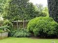 imagen Tu Jardín Perenne