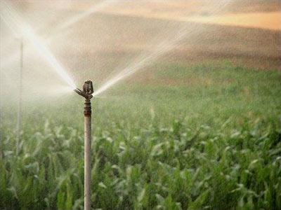 Sistemas de riego - Aspersor de agua ...