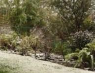 imagen Tareas de Invierno