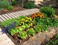 imagen Diseña tu jardín ecológico