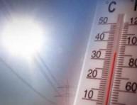 imagen Clima y cultivo de plantas: Temperatura