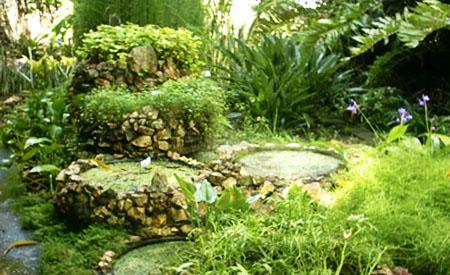 Dise a tu jard n ecol gico - Disena tu jardin ...