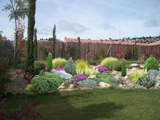 Coniferas enanas for Coniferas de jardin